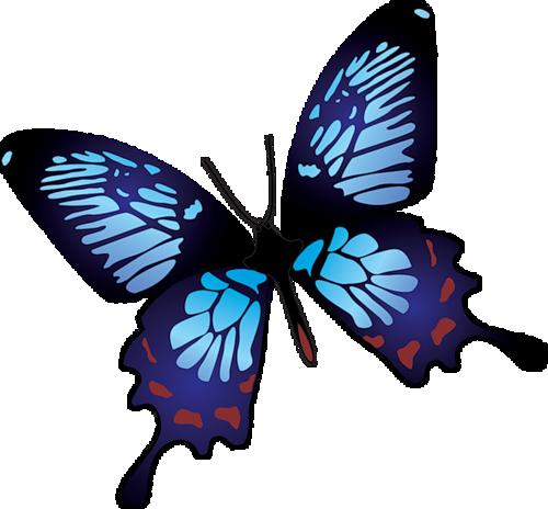 Нарисованная бабочка картинка 7